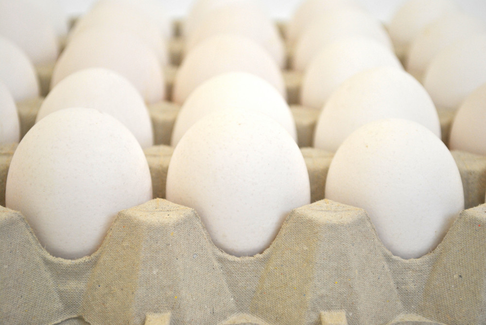 Fresh spanish chicken table eggs (Brown and white)