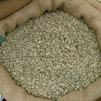 Top Robusta Green Coffee Bean With