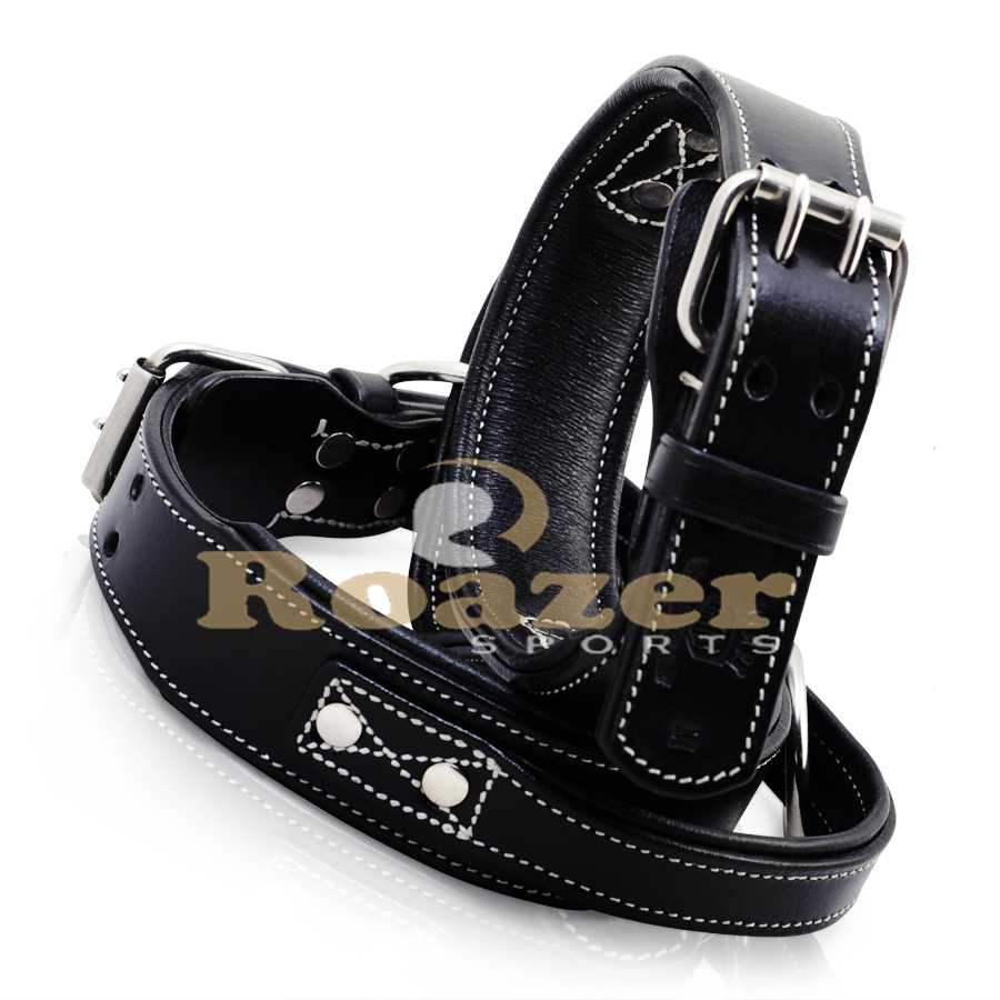 Dog Collar made by Leather