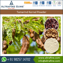 Tamarind Kernel Powder Freshly Grown with No Chemical Addition