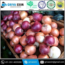 Red Frozen Onion Exporter in india