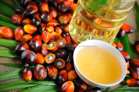 Crude and Refined Palm Oil (RPO)