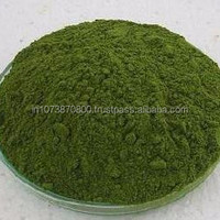 Organic Moringa Powder For International Market