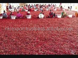 NEW CROP FRESH RED HOT CHILLI / DRIED CHILLI / CHILLI POWDER EXPORTER TO CHINA