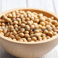 Organic Soybean Soybean Soya Bean Yellow