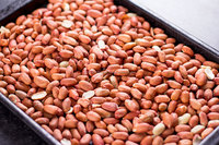 Sell High Grade Raw Peanuts and Peanuts for Sale