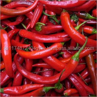 Fresh Red Chilli Pepper