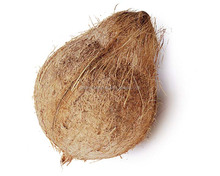 !!!550 GMS Fresh Semi Husked Coconut from Tuticoirn Ports!!!