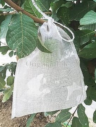 *Two-Side Rope(convenient to tip)*Fruit Bagging/PE 55 mesh(1500 mesh) Grow Bag/ Non-consumable Bagging Fruit and Vegetable / Avo