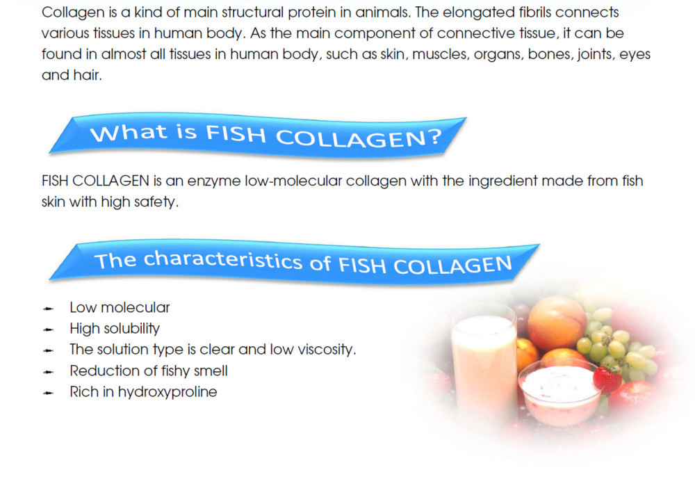 Japanese Low Molecular Weight Fish Collagen Powder From Hokkaido Salmon Skin For Beverages For Skin Moisturizing, Elasticity