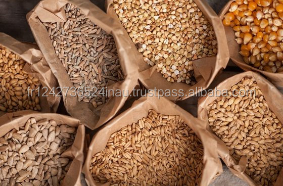 Grains, Cereals, Maize, Wheat, Barley, Sorghum, Rice