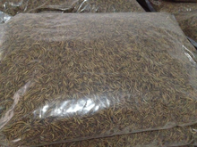 Wholesale Chicken Worm Dried Mealworms for Poultry Feed