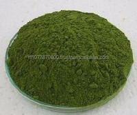 Moringa leaf powder from india