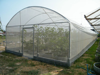 Greenhouse film for agriculture