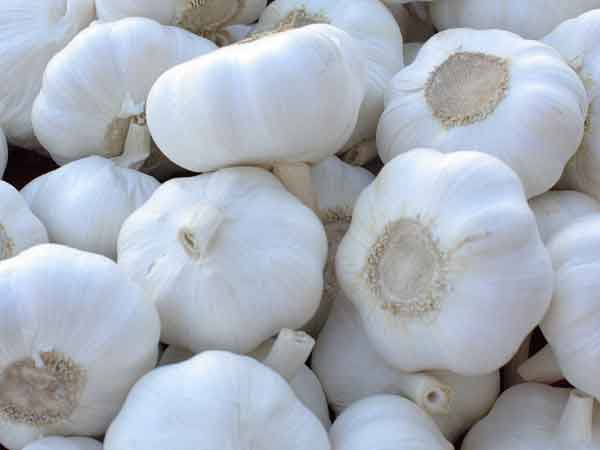 Natural white garlic, fresh pure white garlic, onions, & fruits for sale.