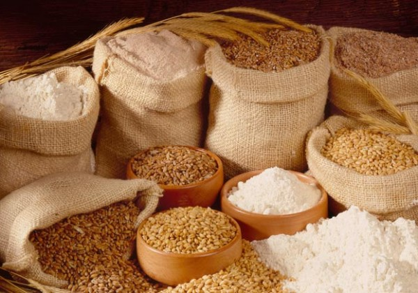 wheat flour for making bread with good wheat flour price