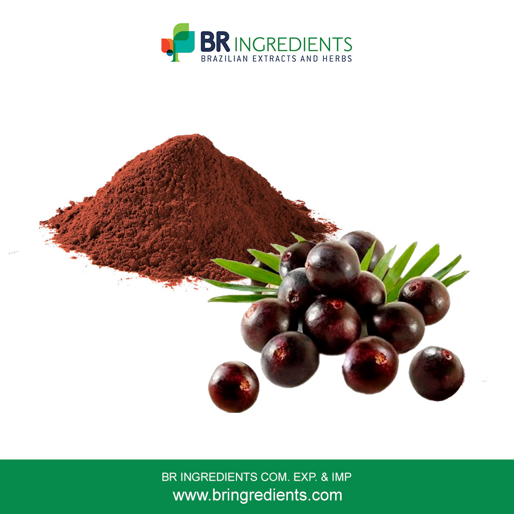 Freeze Dried Acai Berry Powder
