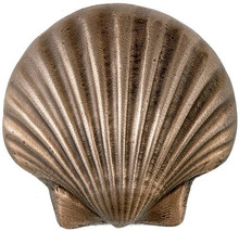 Natural Sea Shell / Fine Crafted Designed Sea Shells Whole Sale Supplier