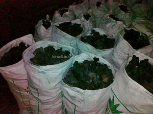 Widely Used Carbon Activated Black Charcoal with Best Specification