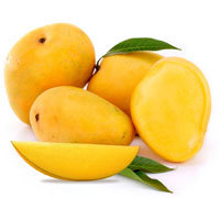 See larger image Fresh Alphonso Mangos Add to My Cart Add to My Favorites Fresh Alphonso Mangos