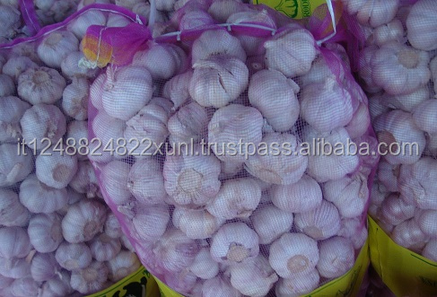 Purle White Fresh Natural Garlic Wholesale