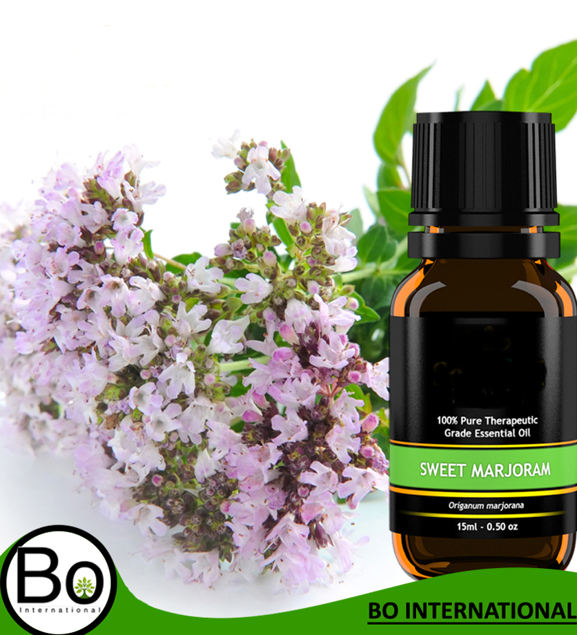 Natural Massage Oil Ingredient 100% Pure Natural Marjoram Essential Oil