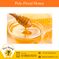 100% Pure Best Quality Polyfloral Garden Honey for Sale