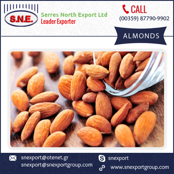 Delicious and Healthy Almond Nut for Healthy Life
