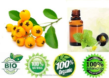 100% certified pure Seabuckthorn Pulp oil for import