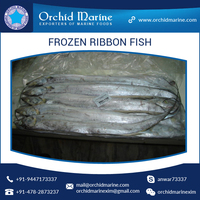 Top Quality Frozen Ribbon Fish by a Leading Seafood Exporter