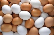 White & Brown Fresh Table Chicken Eggs