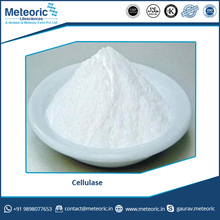 Good Medicinal Value Cellulase Enzyme Available from Reputed Manufacturer