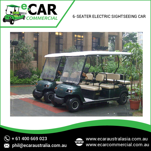 Ecar - 8 Seater Mini Electric Golf Cart Bus (LT-A8)