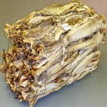 Dried StockFish Exporters From Europe