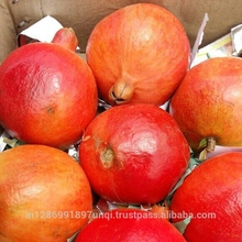 Fresh Red Sweet pomegranate for sale