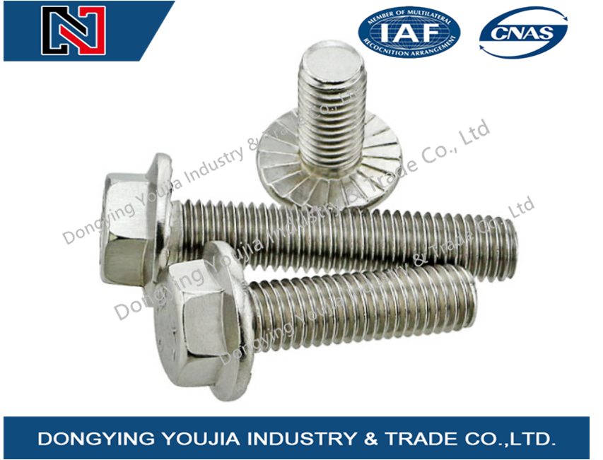GB5787 Stainless Steel Hexagon flange bolt