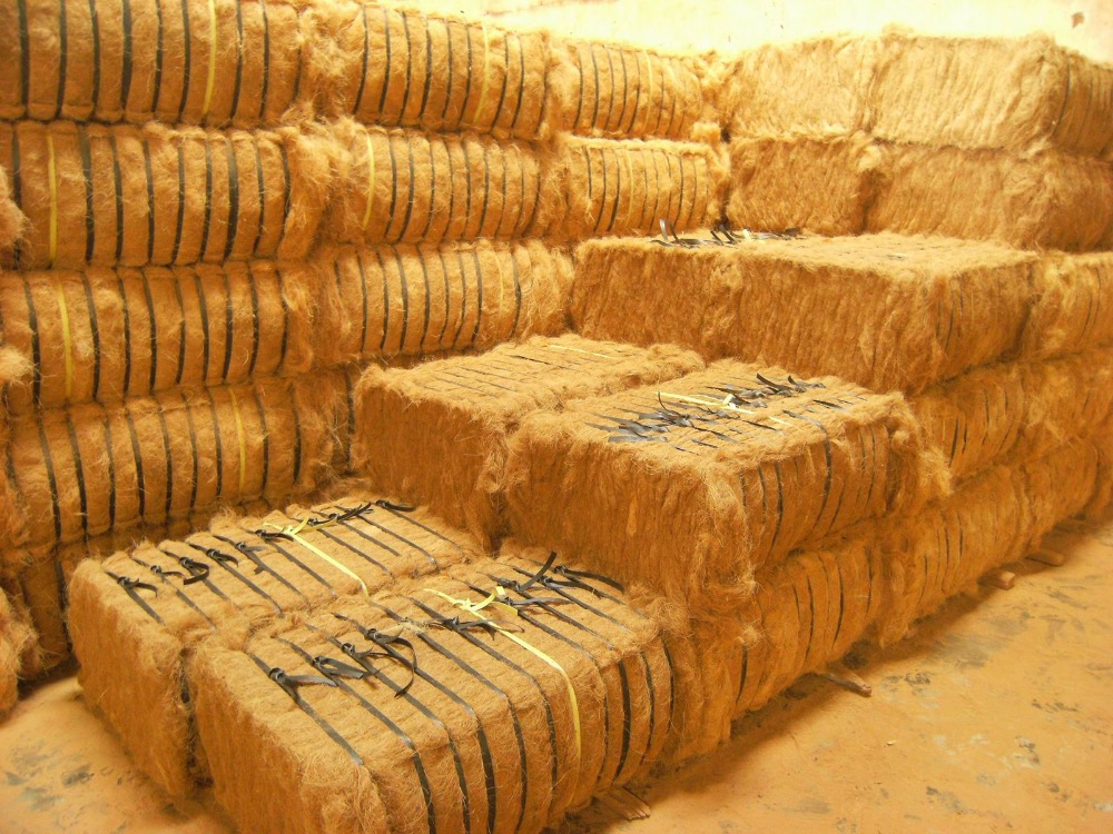 PREMIUM QUALITY Coir Fibre for Mattress Use at best price