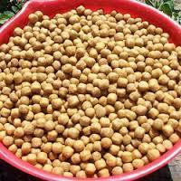 Organic Non-GMO Soybean for cheap price