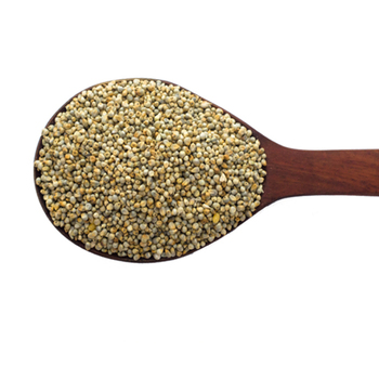 First Class Quality Green Millet For Human Consumption From India