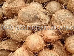 Indian Semi husked Coconut Bulk orders only !!!
