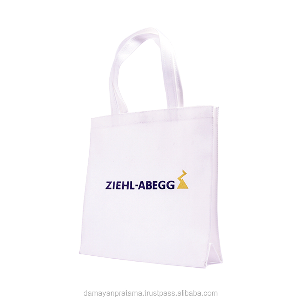 Custom Cheap Promotion Bag PP Non Woven Fabric
