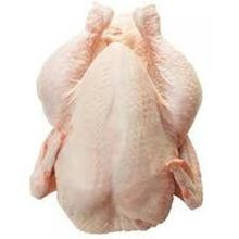 FROZEN WHOLE CHICKEN FOR SALE /Frozen Chicken Broiler / Frozen Chicken Hens for sale