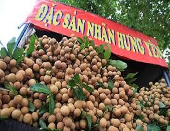 Sweet fresh Longan fruit with US processing