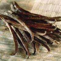 100 Natural Vanilla Beans At Farm