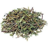 Natural Herbal Cigarettes Raw Materials Dried