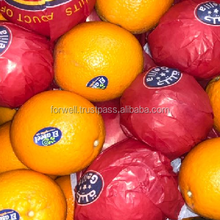 Fresh Orange ; one container 40 ft can load : No of Cartons per container: 1600 cartons