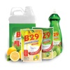 B29 Dishwashing Liquid Formaline Free