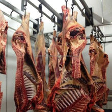Beef Carcass Beef Cuts,Frozen Halal Beef Carcasses And Fore Quarter / Hind Quarter Cuts