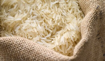 PARBOILED RICE with best price- high quality