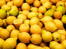 Fresh Lime and Fresh Lemon Best Price/Lime and Lemon /Lemon and Lime for sale at good price